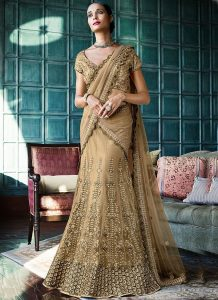Pictures of Net Lehenga.
